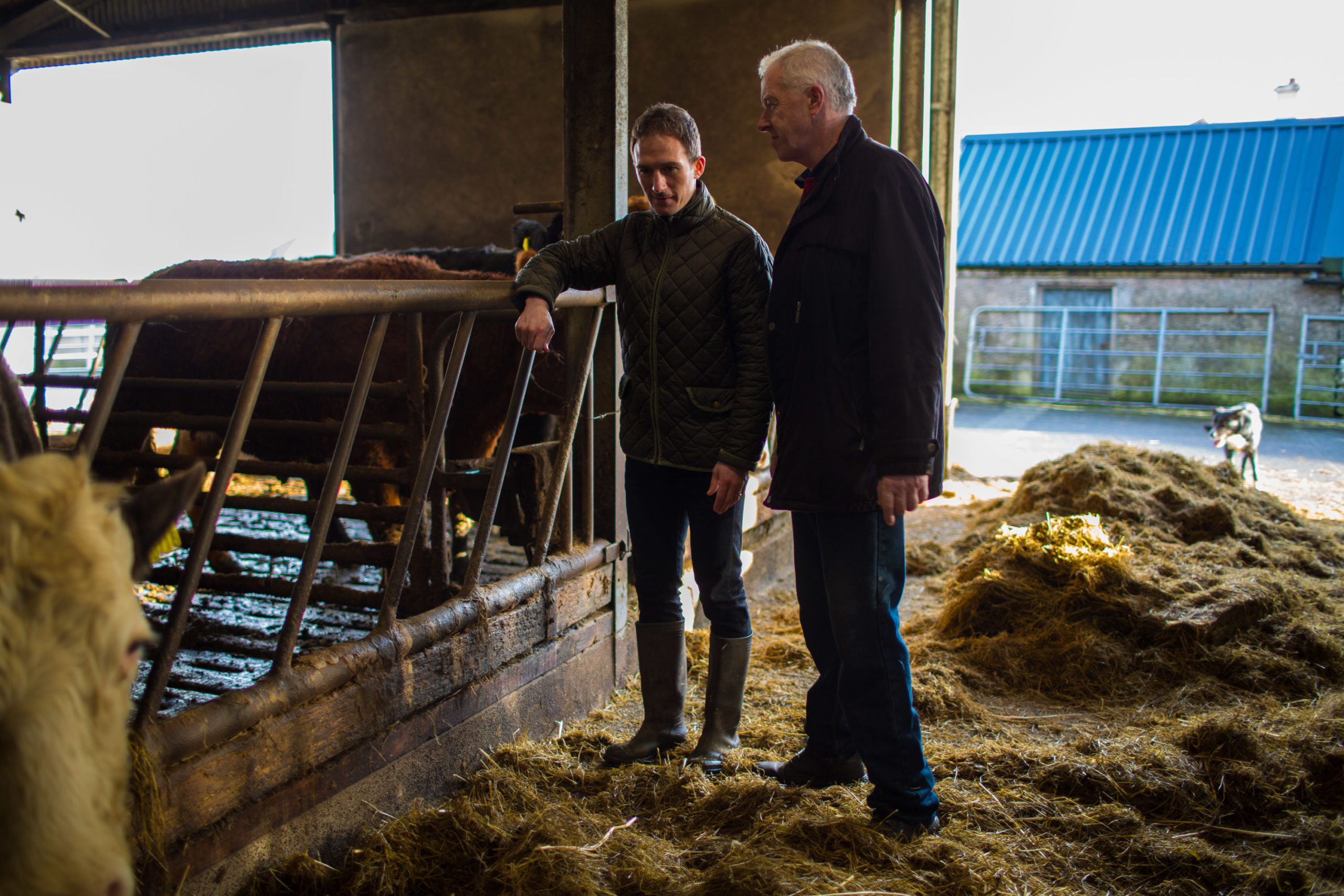 Alan Dillon with Beef Farmer, Owen O'Malley in Islandeady